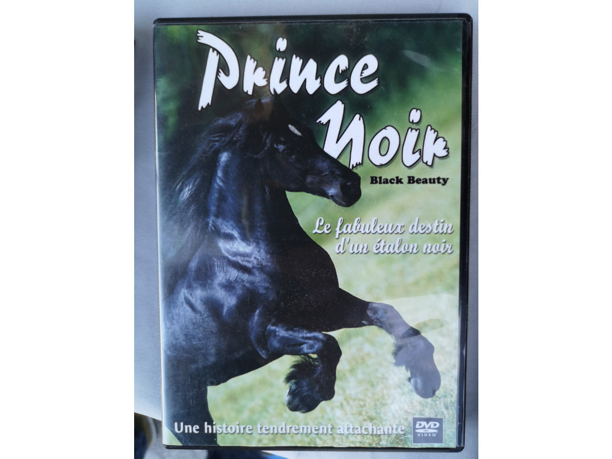 Illustration de DVD : Prince Noir
